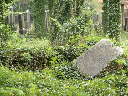 cmentarz_żydowski-046